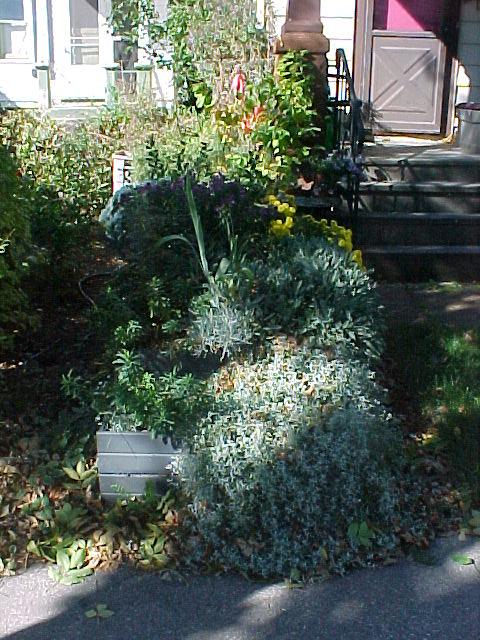 Walk In Garden Box: FRONT YARD WALK PLANTER